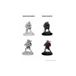 D&D Nolzur´s Marvelous Miniatures: Drow