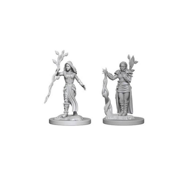 D&D Nolzur´s Marvelous Miniatures: Human Druid