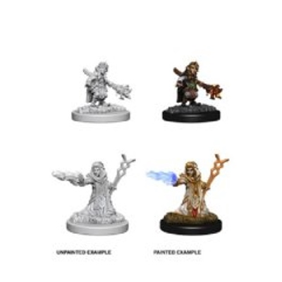 D&D Nolzurs Marvelous Miniatures: Female Gnome Wizard
