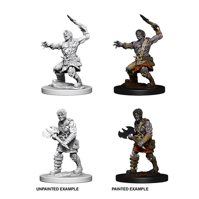 D&D Nolzurs Marvelous Miniatures: Nameless One