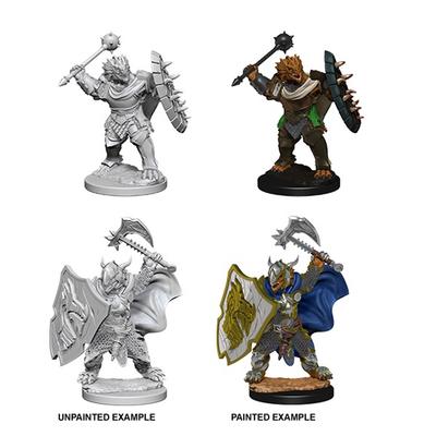 D&D Nolzurs Marvelous Miniatures: Dragonborn Male Paladin
